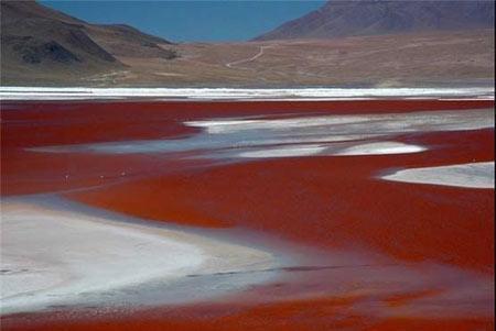 5 دریاچه رنگی دنیا
